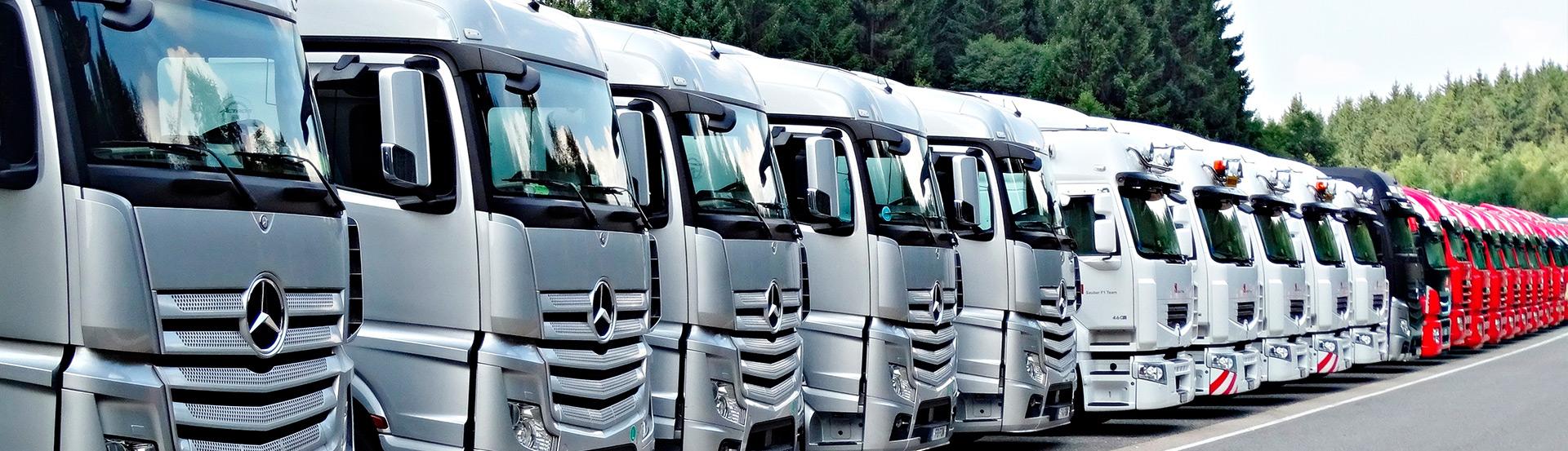 Camiones de cursos CAP de autoescuelas Jordá